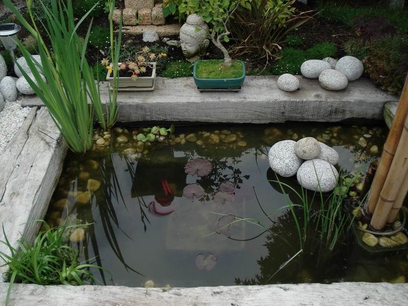 Ma maison mon havre de paix mon jardin japonais for Jardin japonais interieur maison